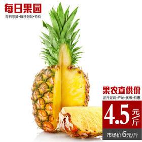 台湾金钻凤梨 精选单颗4斤 无眼凤梨菠萝去皮现吃 新鲜水果特优价-835085