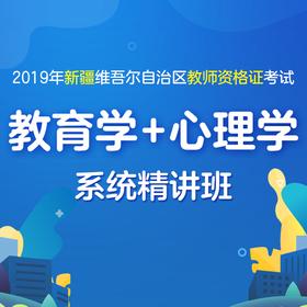 2019年新疆维吾尔自治区教师资格证 教育学+心理学笔试系统精讲班
