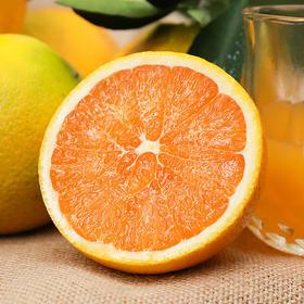 可以喝的爆汁橙 九月红宝宝橙  细腻化渣 酸甜爽口 自家果园橙子现摘现发  5斤装/9斤装 | 基础商品