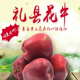 一地一品礼县花牛苹果粉糯香甜现摘新鲜水果蛇果非红富士阿克苏苹果