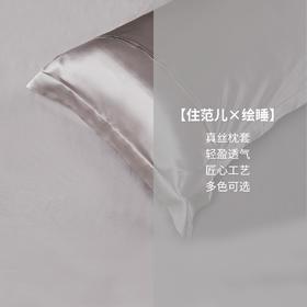 Letsleep/绘睡真丝枕套桑蚕丝纯色枕头套成人单人枕床上用品