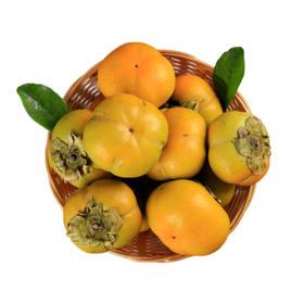 陕西渭南阳丰脆柿子|自然脱涩 甜脆爽口|5斤【严选X水果蔬菜】