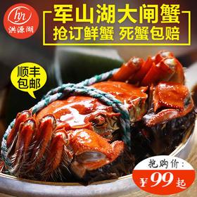 军山湖大闸蟹江西特产螃蟹2~3.5两礼盒装6/8/10只装顺丰包邮