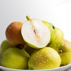 每年超3000小时日照库尔勒香梨 皮薄肉厚 青脆爽口 软甜多汁 现摘现发约6斤