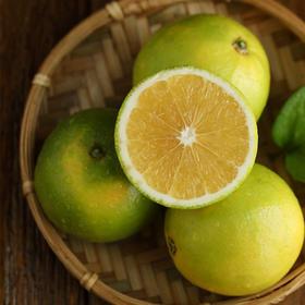 [阳光柠香橙 下单后1-3天内发货]青翠饱满 口口清甜 10斤装