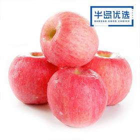 【辽宁省内包邮】脆甜红富士苹果  新鲜当季水果5斤装