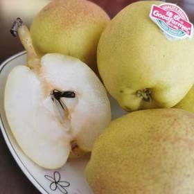 【半岛商城】甜过初恋的小香梨 汁多无渣 可食用率高 6斤&12斤 省内包邮