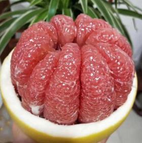 【半岛商城】又甜又多汁的老树红蜜柚 2颗/组 5.8-6.2斤 省内包邮