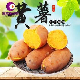 【包邮】新挖广西烟薯 5斤装中薯约20条