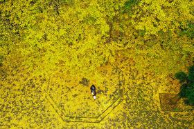 【单身专题】10.27相约灵岩山,远离喧嚣,融入自然。