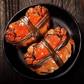 【预售至2月24日发货】黄多肉足 阳澄湖大闸蟹 蟹肉饱满 鲜香味美 香味四溢
