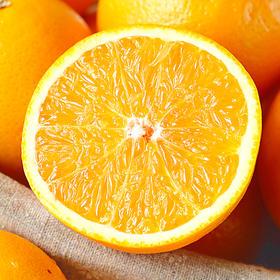 【预售】马槽山赣南脐橙500g试吃装 预计发货时间为11月17号左右