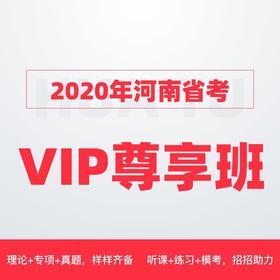 2020河南省VIP尊享班(1400+课时,44册图书礼包,VIP服务)