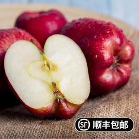 健康美味甘肃花牛蛇果红苹果 清甜可口 富含人体所需微量元素 5斤/10斤装顺丰包邮直达