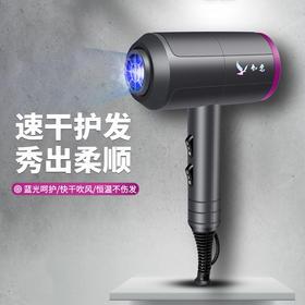 【超高性价比离子护发】智能温控 离子护发 水润亮泽 便携式知名速干吹风机
