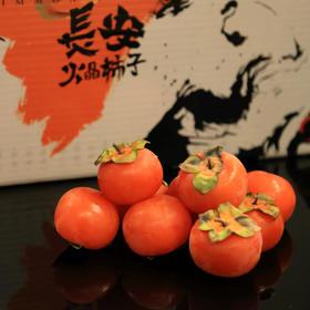 【能用吸管吸的柿子】长安火晶柿子 甜糯清香 肉多饱满 现摘现发 果园直邮 40枚