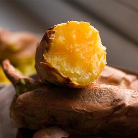 软糯香甜陕北山地甘薯 甜蜜可口 产地现挖新鲜直达 6斤装