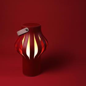 物色灯笼 JUHEwuse 红灯笼 除夕春节 氛围灯 喜庆吉祥 质感优雅 阅读灯 起夜灯