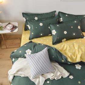 新款加厚斜纹磨毛四件套 生态简约床单被套 床上用品 四件套 水洗棉 冬季四件套