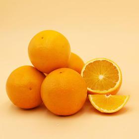 【褚橙庄园直采】每年不够卖的褚橙手慢无 皮薄易剥|果肉化渣|汁多味甜|72小时内直发
