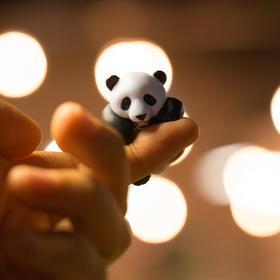 【随机1款】滚滚而来 天然呆迷你萌 大熊猫 扭蛋 模型 摆件