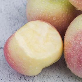 山西红富士苹果带箱10斤装 皮薄多汁 肉质紧致 清甜脆口