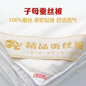 [优选]【预售】100%桑蚕丝被子母被  柔软贴身 舒适透气 四季可用