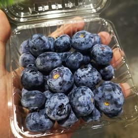 佳沃蓝莓 护眼神器