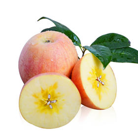 【半岛商城】临猗红富士丑苹果中大果8斤送半斤(18个内) 今年新苹果