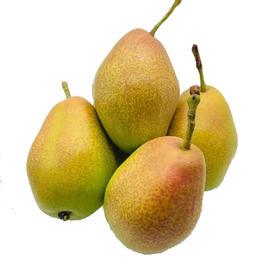 山西运城红香酥梨|美味香梨 口感甜脆|2-8.5斤装【严选X水果蔬菜】