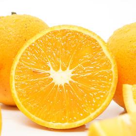 1号冰糖橙  黔阳冰糖橙 子5斤迷你净果装