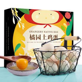 预售  2月1号开始发货橘园土鸡蛋20枚 礼盒装 顺丰包邮