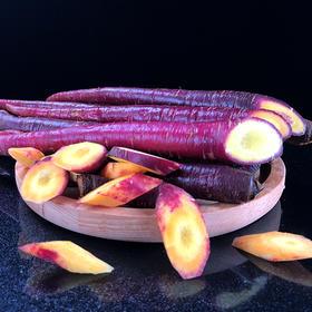 云南大理紫皮水果胡萝卜手指萝卜