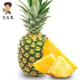 海南16号甜蜜蜜凤梨|口感酸甜可口汁多味美|4.5-5斤装【严选X水果蔬菜】