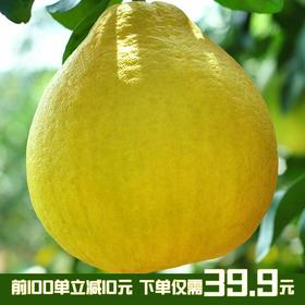 广丰马家柚子清香甘甜新鲜红肉蜜柚红心柚子  2个装顺丰包邮