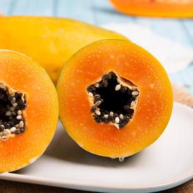 云南高原红心木瓜 色泽鲜艳 肉质鲜嫩 果味浓郁 产地新鲜直达 5斤装