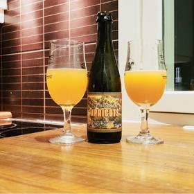 布鲁瑞 泥土芳香 果园计划 杏子 啤酒375ml