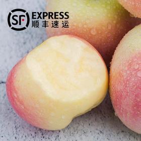 顺丰包邮 陕西红富士苹果带箱10斤装 皮薄多汁 肉质紧致 清甜脆口
