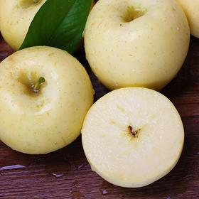 奶香味~烟台黄金奶油富士苹果 果香 核小 脆甜 多汁 自然成熟