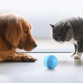 疯狂跳跳球 | 全自动智能逗宠球,猫狗通用