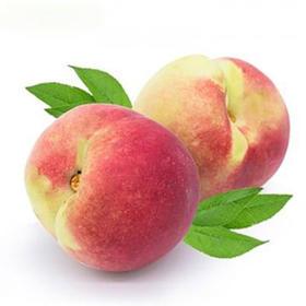 云南紫溪山冬桃高原雪桃甘甜新鲜水果脆甜3-5斤包邮