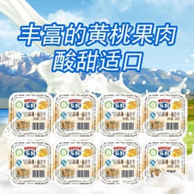 【内购】东方八连黄桃果肉酸奶