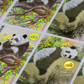 【中国印钞造币】联合国大熊猫钞艺画