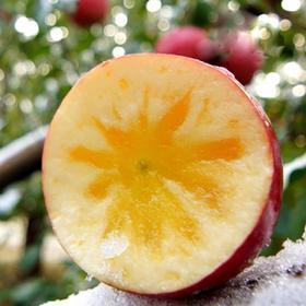 新疆阿克苏苹果 带箱10斤装 单果约200克 冰糖心苹果 孕妇水果 新鲜当季水果
