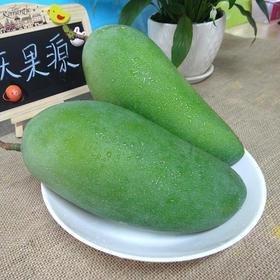 越南芒果大青芒青皮芒肉厚多汁超甜新鲜采摘时令水果