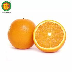 马槽山脐橙赣南脐橙大果80mm左右  20斤装