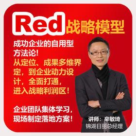 辛敏琦 | 第4期《Red战略模型训战班》