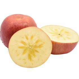 【西域果园】新疆阿克苏冰糖心苹果 当季新鲜水果包邮带箱 9-10斤