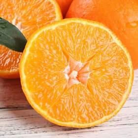 四川爱媛38号果冻橙手剥  橙汁多现摘新鲜水果包邮