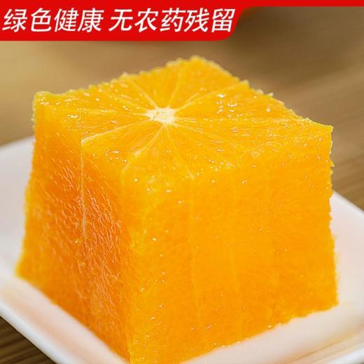 【新鲜脐橙】江西赣州  赣南脐橙8斤装 新鲜当季甜橙赣南脐橙 商品图2
